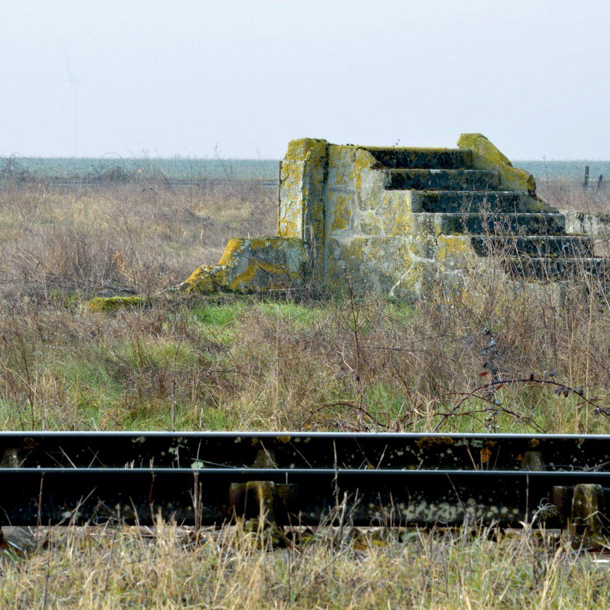 Lors de notre première visite sur le site, les vestiges étaient noyés, engloutis par les hautes herbes. Il nous a semblé que ce naufrage était révélateur de l'histoire des lieux, dont on aurait voulu effacer la mémoire.